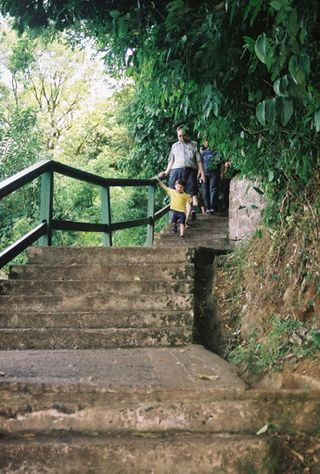 Brazil_Falls_Path
