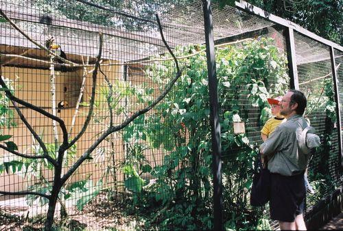 Brazil_birdpark2