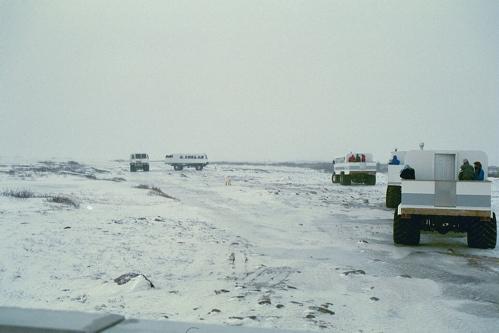 Tundra_buggy_caravan