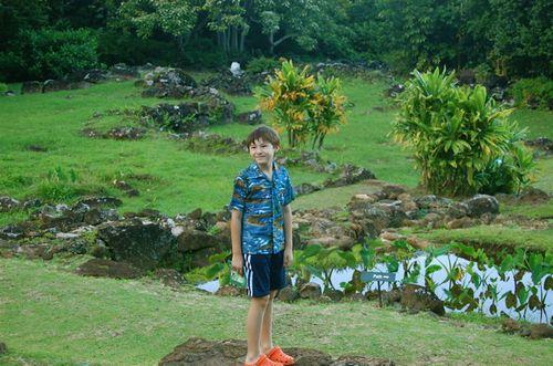 Limahuli Alex Garden