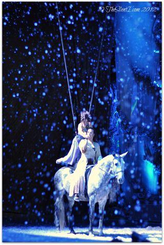 Cavalia Horse Snow x