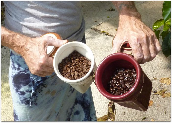 Coffee Dark Medium Roast Beans